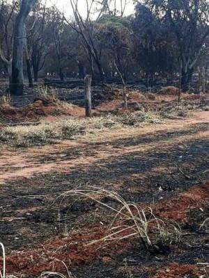 propriedade-rural-e-multada-em-mais-de-r-100-mil-por-queimada-em-araraquara-lHPK